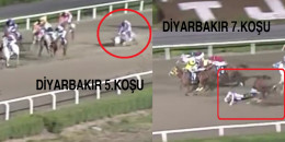 15 Eylül Çarşamba günü Diyarbakır Hipodromu'nda 5.ve 7 koşuda üzücü kazalar oldu